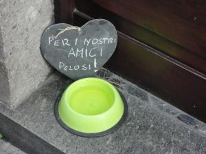 In centro a Torino. Foto, Romano Borrelli