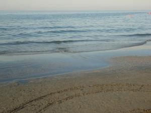 Sabato 19 luglio 2014, mar Adriatico, Senigallia. Foto, Romano Borrelli