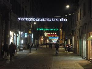 Torino, 22 novembre 2014, Luci d'Artista, foto, Romano Borrelli