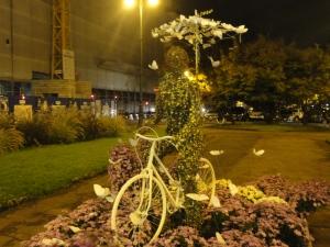 Torino, 8 novembre 2014. Corso Galileo Ferraris, foto, Romano Borrelli