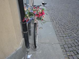 Torino in...bici, per le vie del centro. 6 novembre 2014. Foto, Romano Borrelli