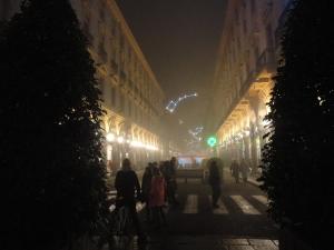 Torino 20 dicembre 2014 via Roma Pedonalizzata. Foto, Romano Borrelli