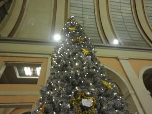 Torino 24 dicembre 2014, foto, Romano Borrelli