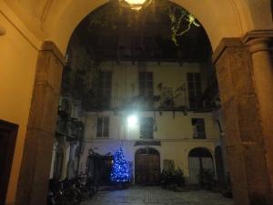 Torino 27 dicembre 2014, foto, Romano Borrelli
