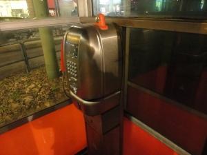Torino, interno cabina telefonica. Foto, Borrelli Romano