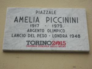 Torino, 14 febbraio 2015. Foto, Romano Borrelli