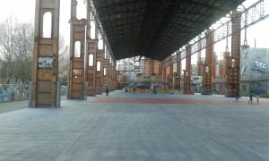 Torino.Parco Dora 6 4 2015.foto Borrelli Romano
