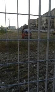 Torino c.so p.oddone.foto borrelli romano
