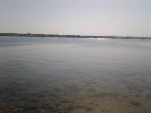 2 8 2015 foto Romano Borrelli. Porto Cesareo (Le)