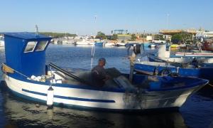 Porto Cesareo, Le.20 8 2015, foto, Borrelli Romano