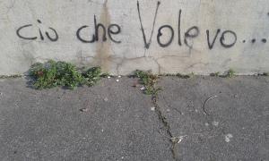 Torino, 27 8 2015 foto Borrelli Romano