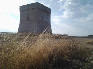 Torre Chianca, 3 8 2015 foto Romano Borrelli