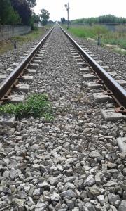 12 8 2015 Ferrovie Sud Est foto Romano Borrelli