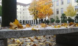 29 10 2015 Torino Valdocco foto Borrelli Romano