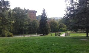 Torino Valentino 1 10 2015 foto Borrelli Romano
