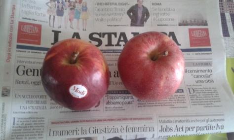 29 1 2016 foto Borrelli Romano.Torino