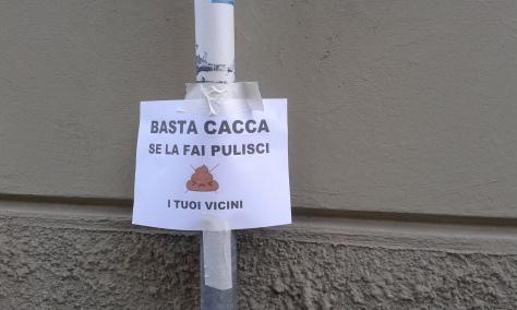 30 1 2016 foto Borrelli Romano.Torino via Biella