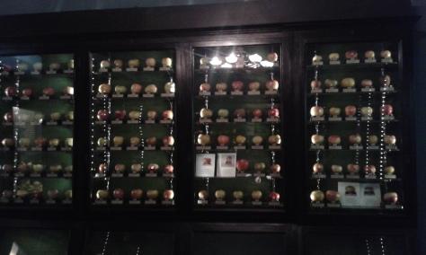 Torino 2 2 2016 museo della frutta.Borrelli Romano