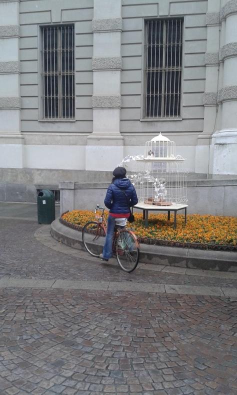 Torino 2 4 2016 foto Borrelli Romano