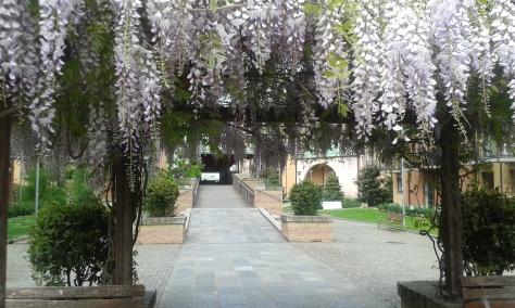 Torino 23 4 2016 foto Romano Borrelli
