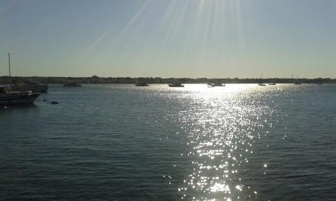 Porto Cesareo 13 8 2016 foto, Borrelli Romano