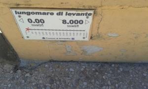 Senigallia,3 8 2016 Borrelli Romano foto