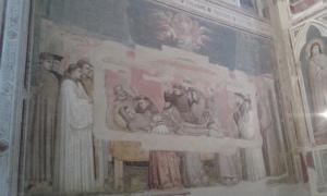 firenze-santa-croce-giotto-foto-borrelli-romano