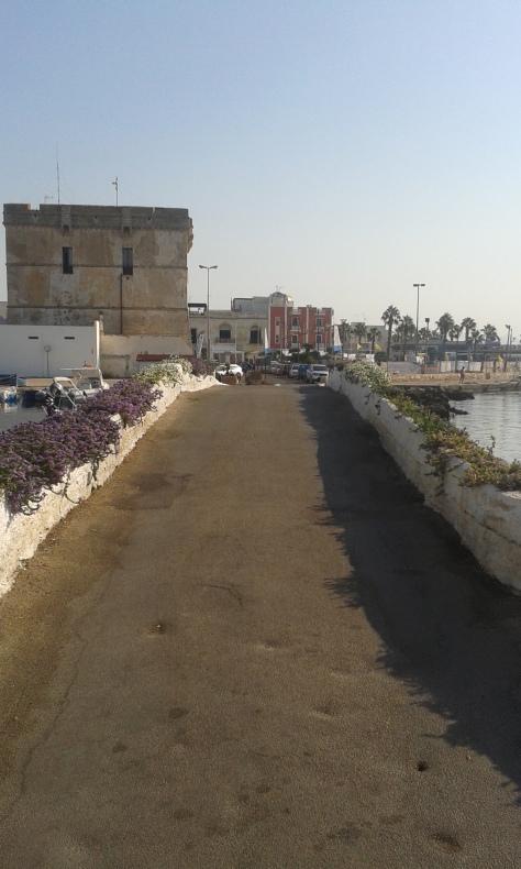 Porto Cesareo (Le), 4 8 2017.Romano Borrelli foto